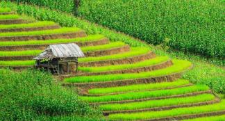 Découvrir la beauté du pays sur www.thailandevo.com